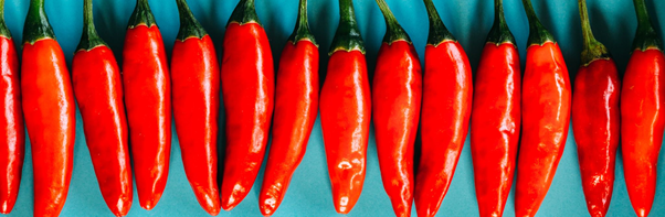 https://mychillifestival.com.au/wp-content/uploads/2020/09/chillies-e1601095788455.png
